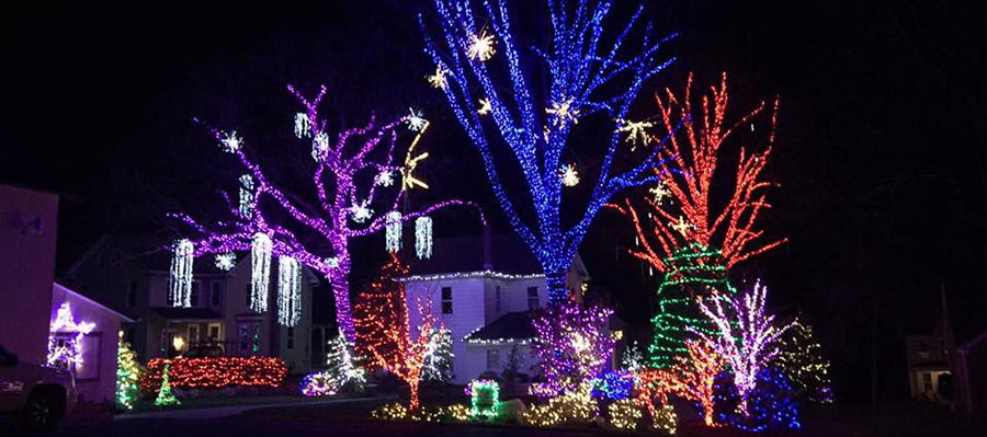Interactive Site Shares Christmas Lights Controls with Visitors