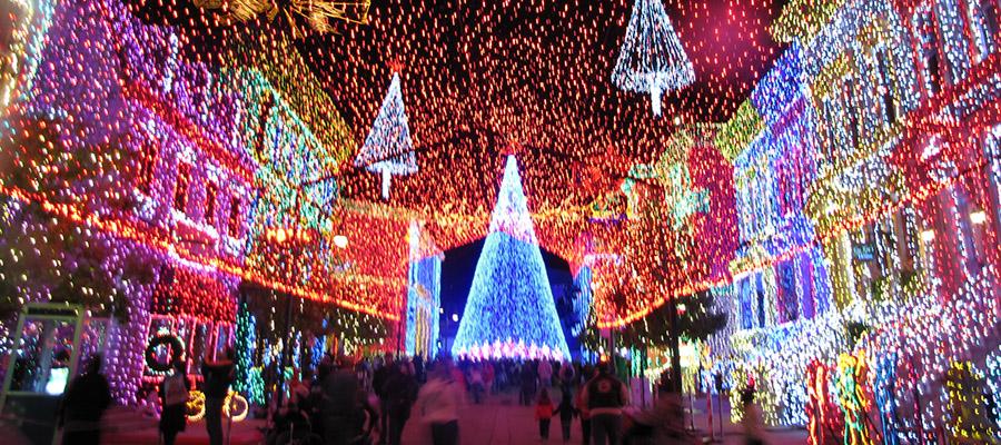 No Christmas Lights at Disney World