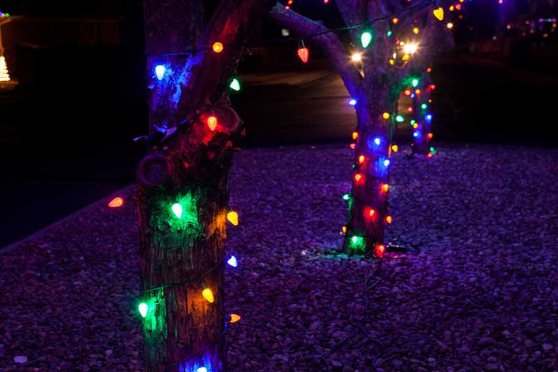 christmas-light-installation-thornton-1
