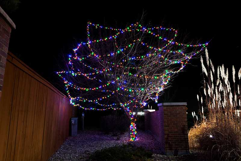 christmas-light-installation-thornton